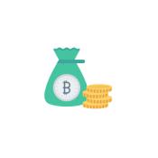 Coins Bag / Keeper 硬幣袋